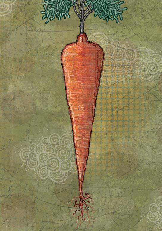carrot_4
